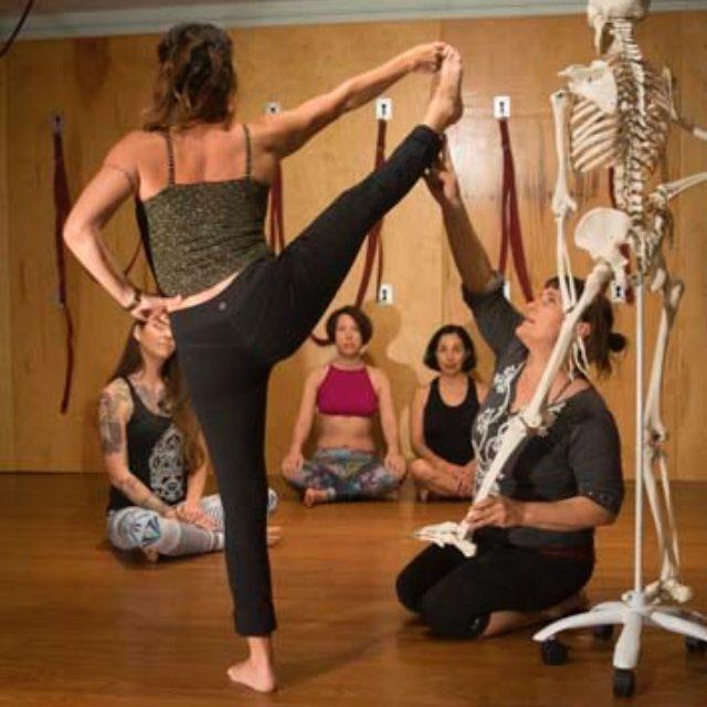 Yoga Instructor Training Ace Of Cups Austin Texas